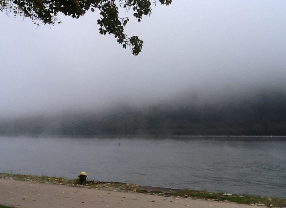 Grüße vom Nebel-Rhein