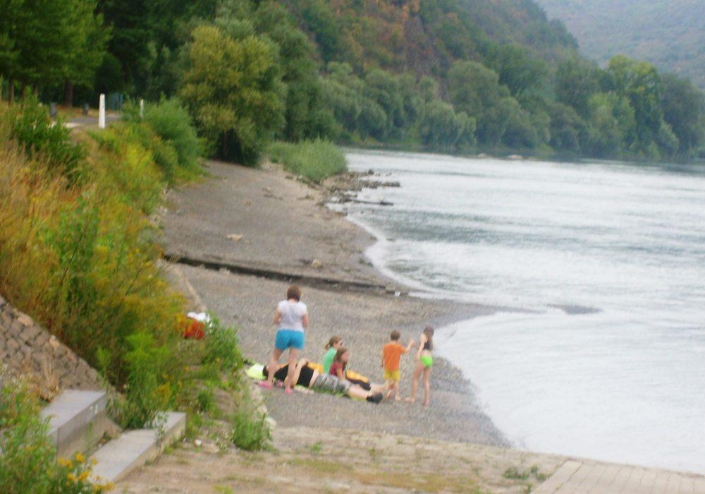 hallo Schwimmer: der Rhein ist nicht die stille Adria !
